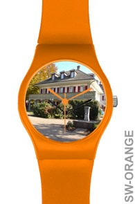 Special Promotion Watch SW-ORANGE